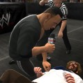 I Quit And King of the Ring Confirmed For WWE '13