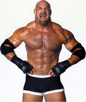 Is Bill Goldberg In WWE 2K14?