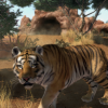 Zoo Tycoon Announces First Real Life $10,000 Donation Recipient