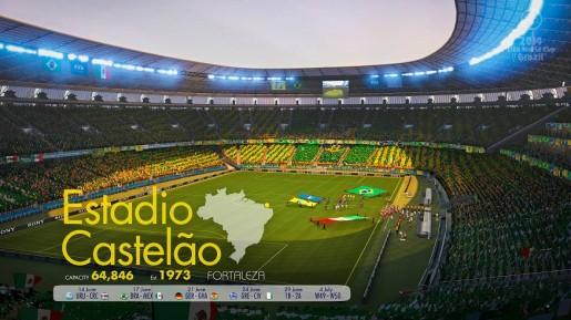 2014 FIFA World Cup Brazil (6)