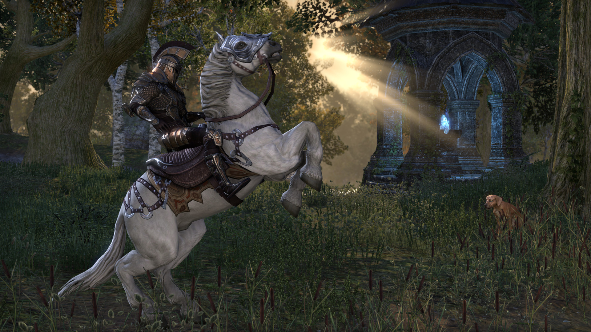 Elder Scrolls Online getting new zones active world PvP and more
