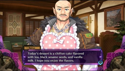 fairy fencer chef