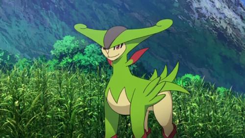 Pokemon Omega Ruby Virizion
