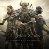 The Elder Scrolls Online (PS4) Review