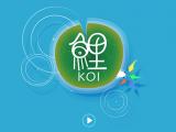 Koi Review