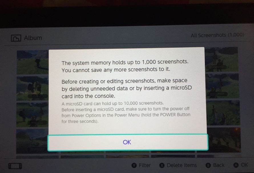 Nintendo Switch Internal Memory Can Hold 1000 Screenshots With More On SD Card