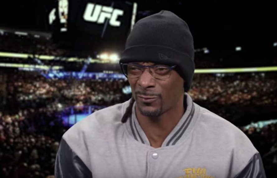 Snoop Dogg Offering Commentary In EA Sports UFC 3's 'Knockout Mode'