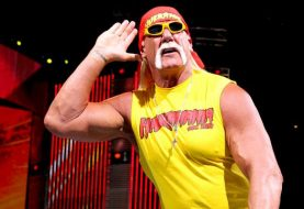Will Hulk Hogan Get Added Into WWE 2K19 Now?