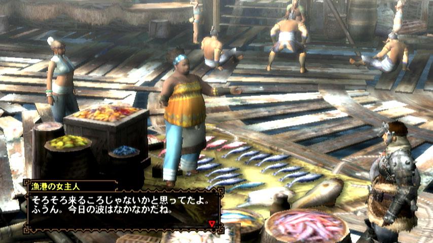 Monster Hunter 3 Ultimate online servers will be region-locked