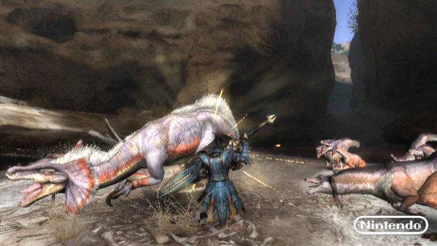 Monster Hunter Tri Review