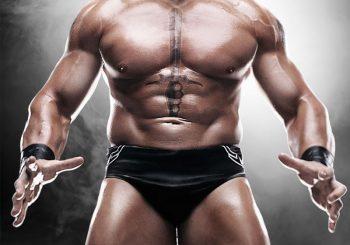 WWE '12 Brock Lesnar Gameplay Screenshots