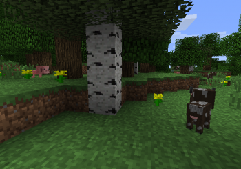 Notch Reveals The Problems With Animal Breeding In Minecraft