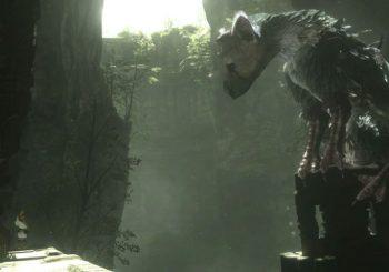 Gamestop Announces The Last Guardian Cancelled