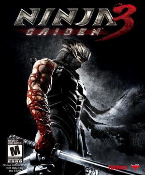 Ninja Gaiden 3 Review