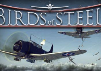 Birds of Steel Review