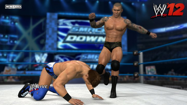A New WWE '13 Survey To Be Filled Out