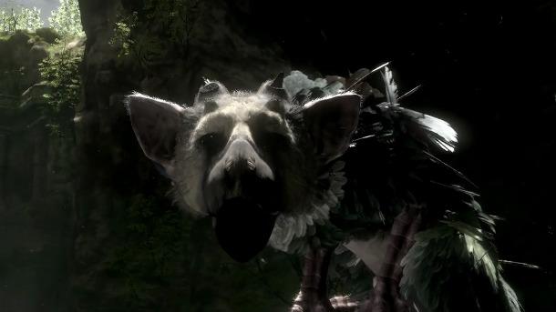 Sony Says The Last Guardian Is Still In Development