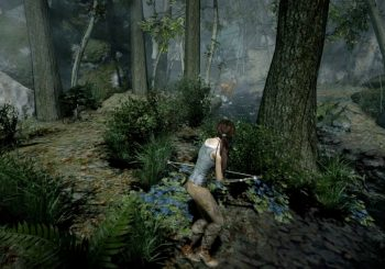 Tomb Raider on PC via Steam gets a patch