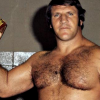 bruno sammartino wwe 2k14