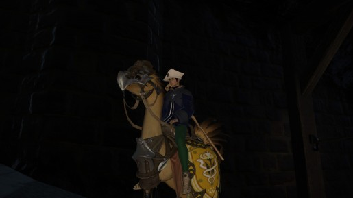 Final Fantasy XIV - Chocobo Guide 2