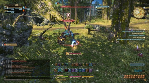 Final Fantasy XIV - Chocobo Guide 04
