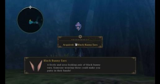 Tales of Xillia - Aifread Treasure Sapstrath Deepwood
