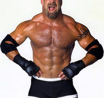 WWE Wants Goldberg In WWE 2K15