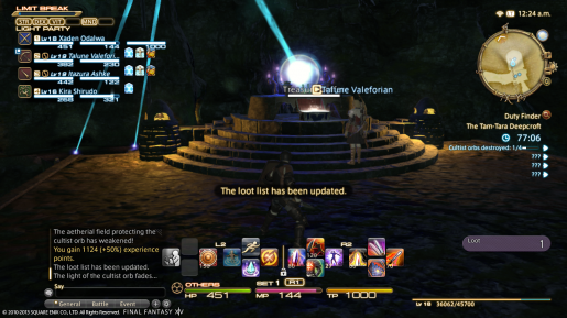 Final Fantasy XIV Overview