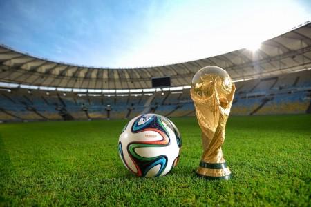 2014 FIFA World Cup Brazil (10)