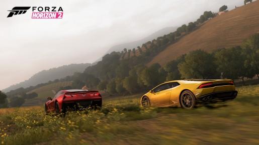 E3-PressKit-10-WM-ForzaHorizon2-jpg