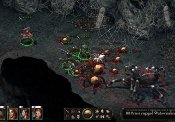 Pillars of Eternity's First Expansion Coming Later this Month