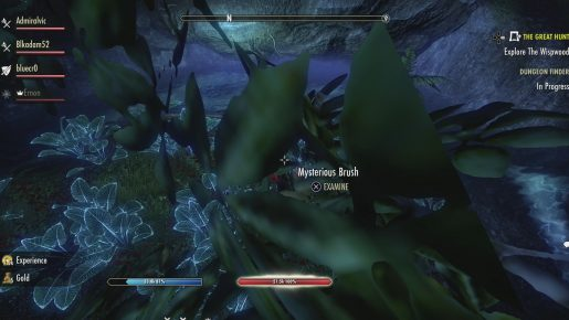 The Elder Scrolls Online - Wolfhunter - 7