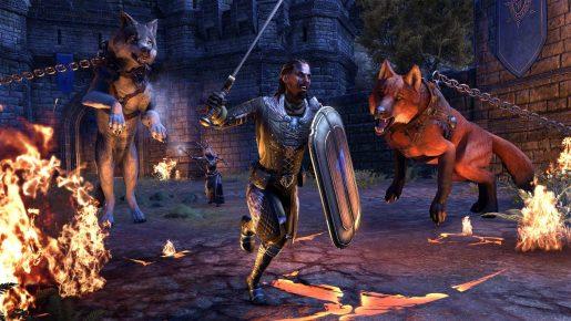 The Elder Scrolls Online - Wolfhunter - 8