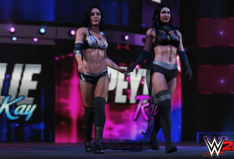 All The New Gameplay Features You Can Expect To See In WWE 2K19