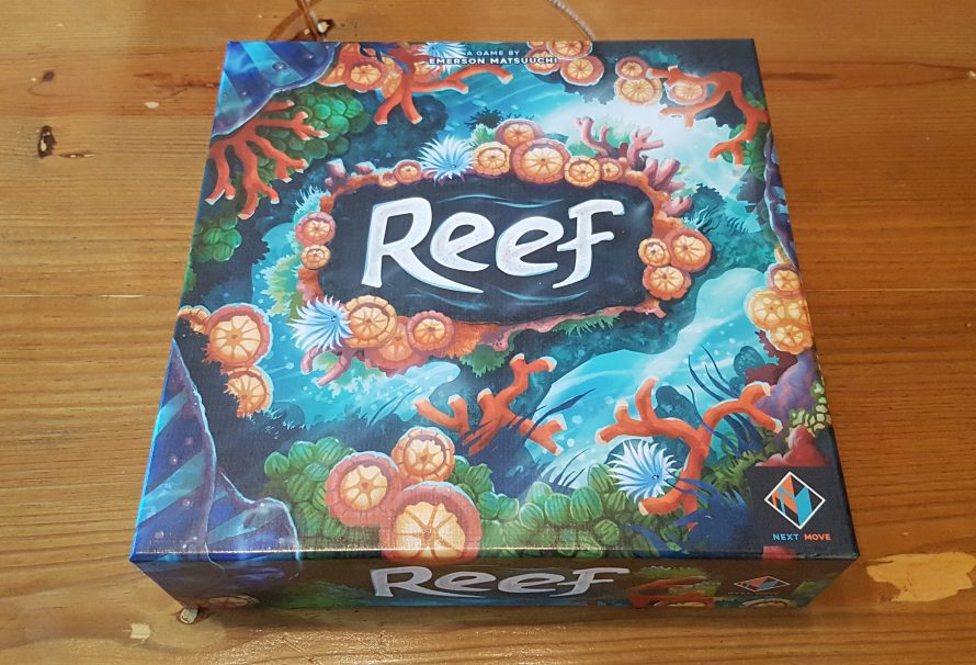 Reef Review – A Sea-riously Great Experience