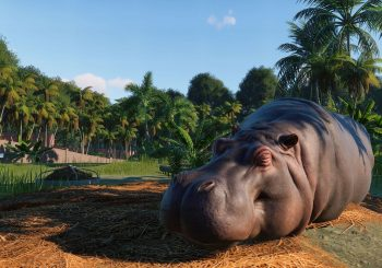 E3 2019: Planet Zoo Release Date & In-Game Footage Revealed
