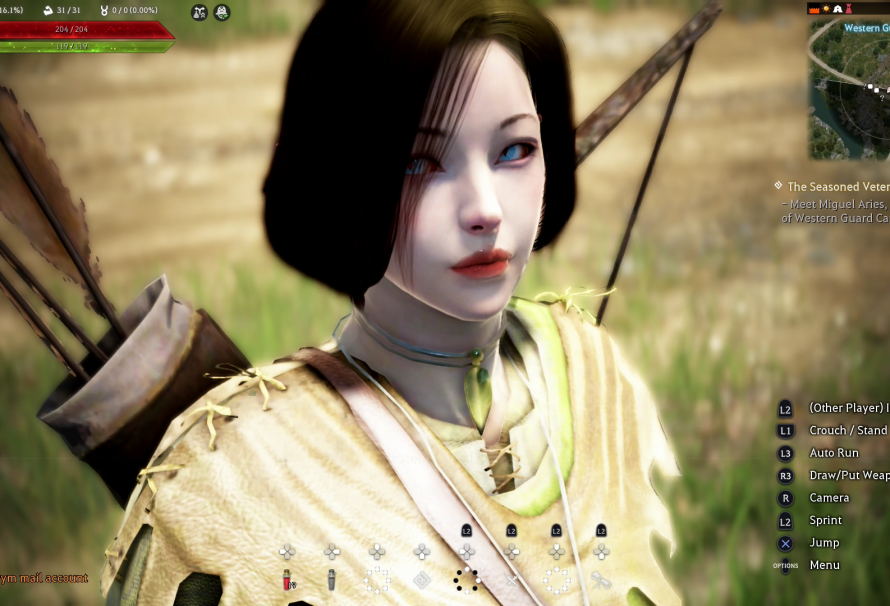 Black Desert (PS4) – How to Access Beta, Preorder and Edition Rewards