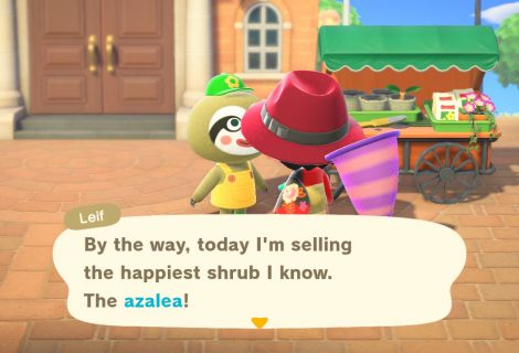 Animal Crossing: New Horizons - How to Find Leif